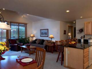 New Year's Week - Breckenridge, CO  Ski-in/Out - Breckenridge vacation rentals
