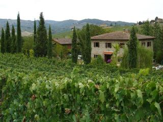 agriturismo PIAN DEL GALLO - Greve in Chianti vacation rentals
