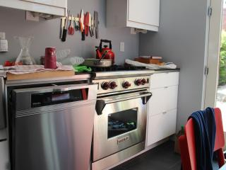 Gorgeous Historic Luxury 3 Bedroom 2 level Apt, sleeps 8 - Washington DC vacation rentals