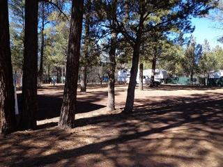 Pine Forest RV Park- (RV & Travel Trailer Parking) - Lakeside vacation rentals