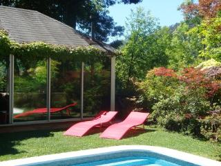 Holiday house for 6 people with pool large    garden in the natural park Gerês  - PT-1077350-Vieira do Minho - Northern Portugal vacation rentals