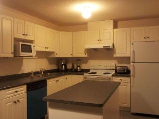 Fully Furnished Apartment Close Deerlake - Burnaby vacation rentals