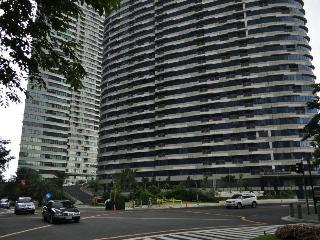 Rockwell Condo For Rent - Makati vacation rentals
