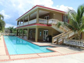 Casa Olimpica - Private 75ft long swimming pool - Rincon vacation rentals