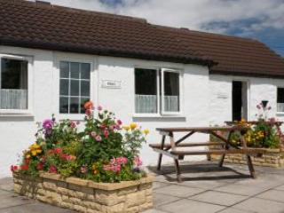 Shire Cottage - Somerset - United Kingdom - Image 1 - West Wick - rentals