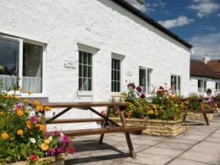 Withy Cottage, Somerset, United Kingdom - West Wick vacation rentals