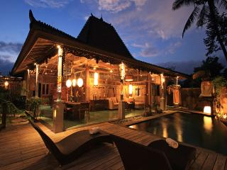 LUXURY VILLA IN UBUD - Lodtunduh vacation rentals