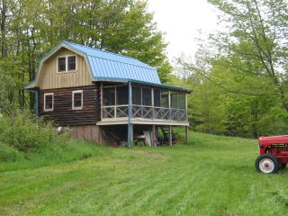 Off the Grid Summer Cabin, Quiet, Near Activities - Stamford vacation rentals