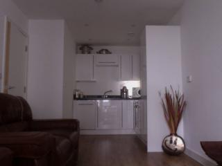 Modern, New Apartment just 30 min from Gatwick - Croydon vacation rentals