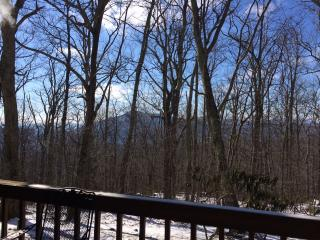 Great Condo in the HEART of Wintergreen! - Wintergreen vacation rentals