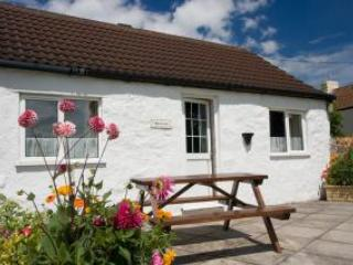 Harvester cottage Somerset - United Kingdom - Image 1 - West Wick - rentals