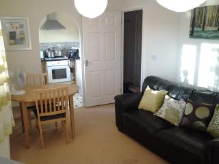 Serviced Apts Wolverhampton West Midlands, England - West Midlands vacation rentals