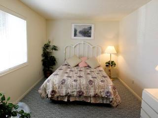 204 - 2 Bed 2 Bath Deluxe - Saint George vacation rentals