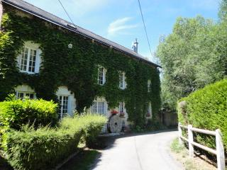 11th century watermill - Chateau-Renault vacation rentals