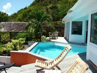Oceana at Vitet, St. Barth - Ocean View, Pool, Private - Terres Basses vacation rentals