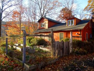 Cozy Catskills MultiFamily Retreat - Mount Tremper vacation rentals