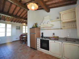 Il Gatto - Capannori vacation rentals
