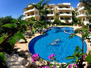 Georgeous spacious condo near the beach - Ciudad del Carmen vacation rentals