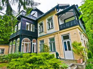 Villa Marie - Penthouse in the Vienna Forest - Lower Austria vacation rentals