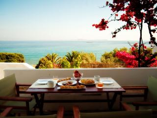 Luxury House by the beach - Cyclades vacation rentals