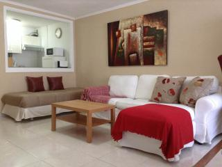Apartamento 1 hab close to the beach, with pool and  wi-fi - Puerto de la Cruz vacation rentals