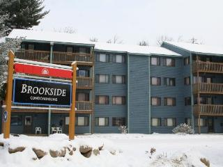 Ski In / Ski Out Brookside Condominium - Newry vacation rentals