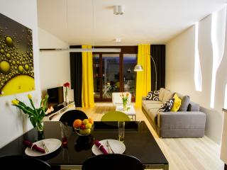 Apartment Lemon - Wroclaw vacation rentals
