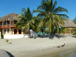 Seaside Belizean Escape on Beach with Pool - Seine Bight Village vacation rentals