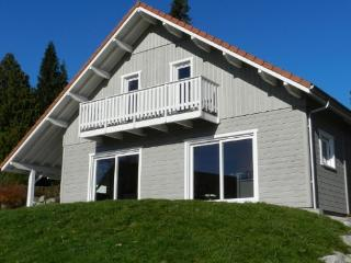 Chalet for 8 people in the heart of  the Vosges, ideal for all types of skiing - FR-1077420-Gérardmer - Lorraine vacation rentals