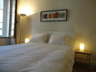 Studio Mouffetard - Quartier Latin - Paris vacation rentals