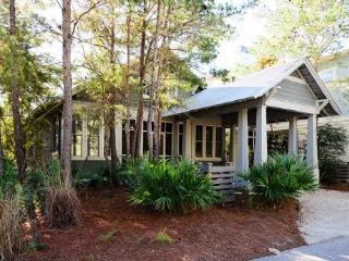 57 Buttercup Street - Watercolor vacation rentals