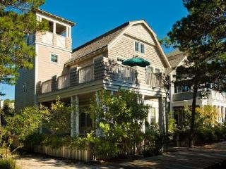 19 Watch Tower Ln - Watersound Beach vacation rentals