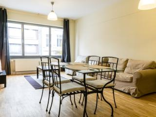 ID 3365- Bright 1br flat in Brussels city centre - Flanders & Brussels vacation rentals