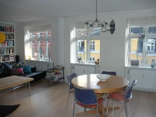 Large Copenhagen apartment in the heart of Noerrebro - Denmark vacation rentals