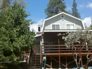Cabin in  Sequoia National Forest -Redwood Groves - Central Valley vacation rentals