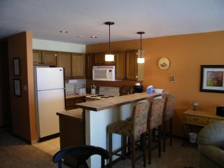 Lakeview Livin' II - Dillon vacation rentals