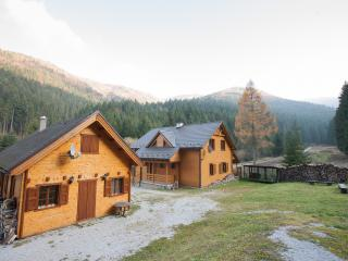 Wili Hunter Country House - Banska Bystrica vacation rentals