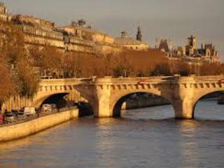 Pont Neuf - Saint Germain des Pres - in the heart of Paris - Paris - rentals