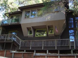 House in the Trees - Lake County vacation rentals