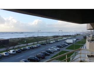 Beach Front Apartment, Excellent Sea View - Vila Nova de Gaia vacation rentals