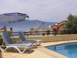 3 Bedroom Villa Kislabay With Airport Transfer - Nevsehir Province vacation rentals