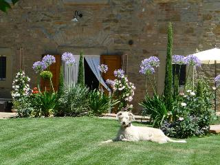 Mary Rose, gorgeous 13th century hilltop villa surrounded by an unique flower garden. - Cortona vacation rentals