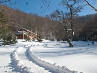BIRDTOWN GUESTHOUSE (PRICE INCLUDES TAXES) 60ACRES - Bakersville vacation rentals
