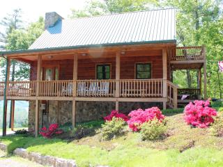 Mountain Cabin on Lake,dock & canoes, on NR Trail - Southwest Virginia vacation rentals