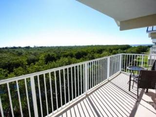 3228 Little Harbor - Ruskin vacation rentals