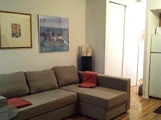 Wonderful Empire State Neighborhood Apartment - New York City vacation rentals
