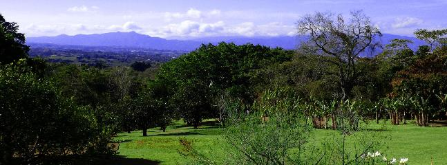 Day view - A place with a fabulous view on a working coffee farm - San Isidro - rentals
