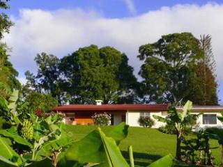 A place with a fabulous view on a working coffee farm - Heredia vacation rentals