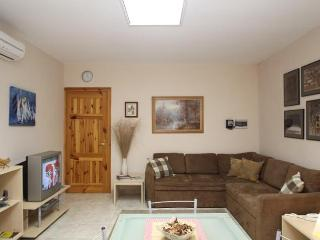Modern Three Bedroom Apartment Close To The Sea Front - Haz-Zebbug vacation rentals