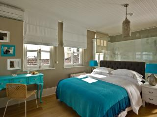 VERY UNIQUE★SEA VIEW PENTHOUSE★TURQUOISE★GALATA!! - Istanbul & Marmara vacation rentals